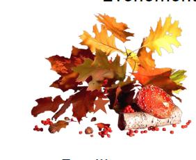 Programme Vacances d'automne